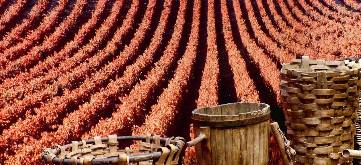 Escapadas a la Rioja fin de semana enológicas rurales romanticas