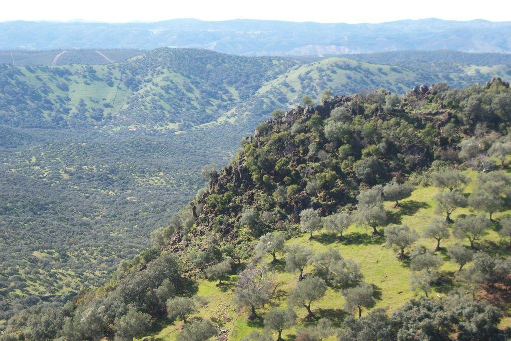 Hoteles en Aracena y en la Sierra de Huelva