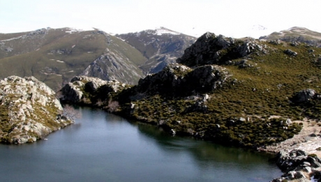 Picos indispensables