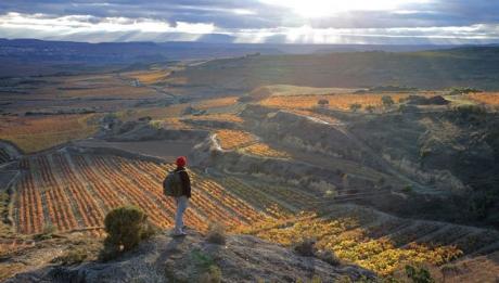 Ven a La Rioja