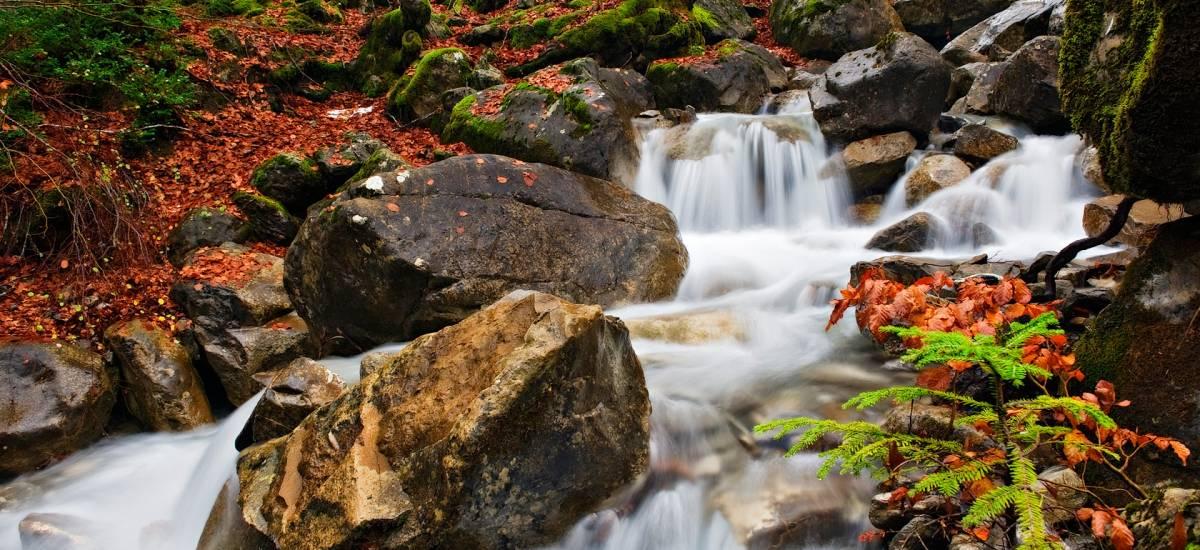 """Experiencia """"Descubriendo Pirineos"""""""