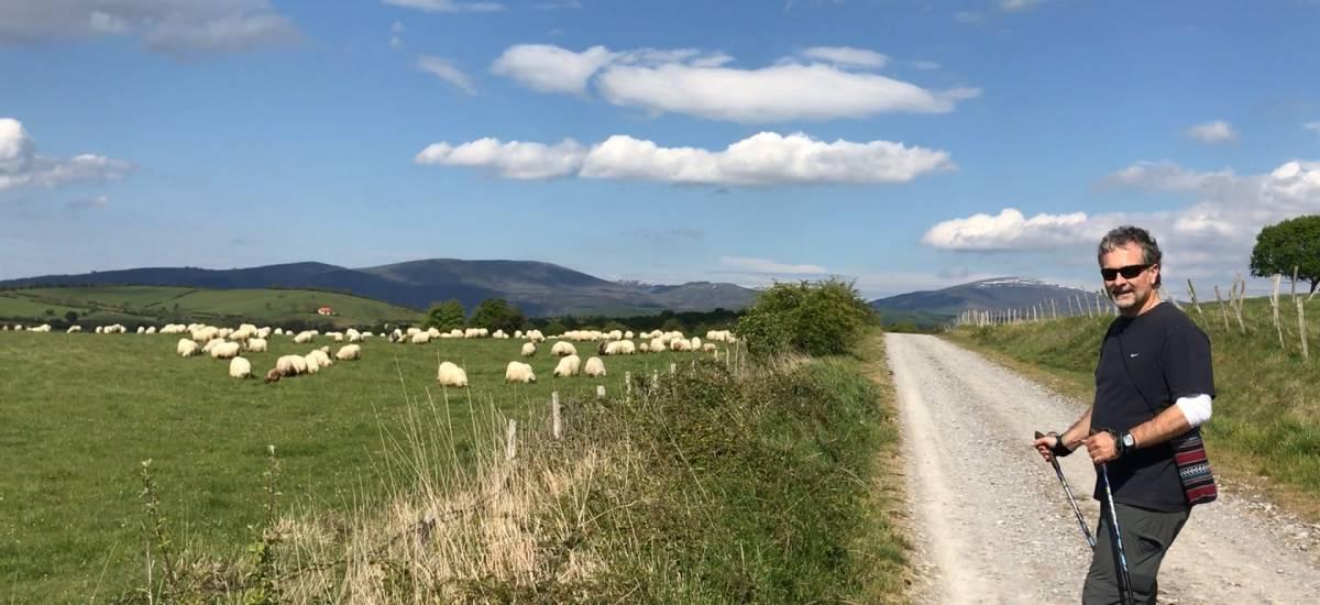 """Experiencia """"Gastronomía Vasca y Nordic Walking"""""""