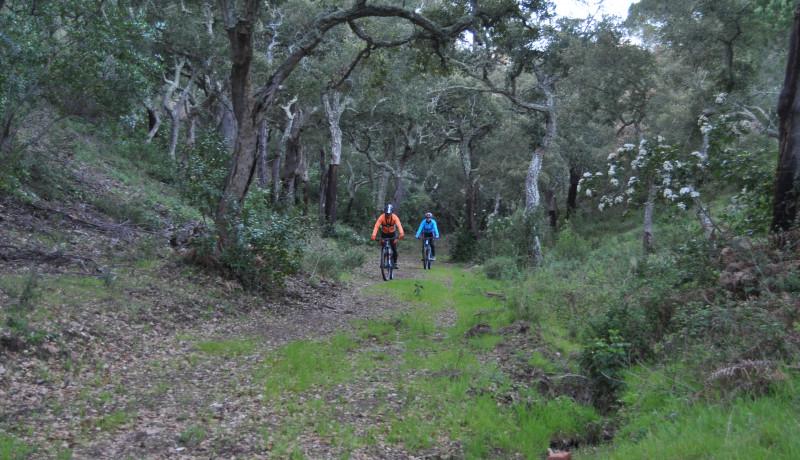 Experiencia Alentejo en bicicleta eléctrica