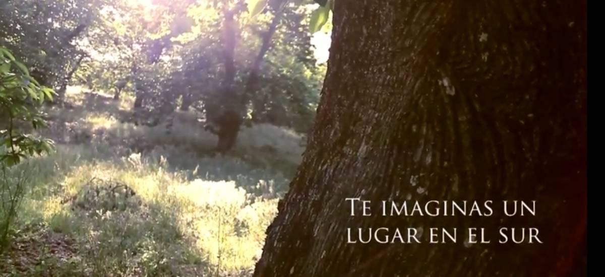 El Castañar de Aracena Casa Rural Video Rusticae