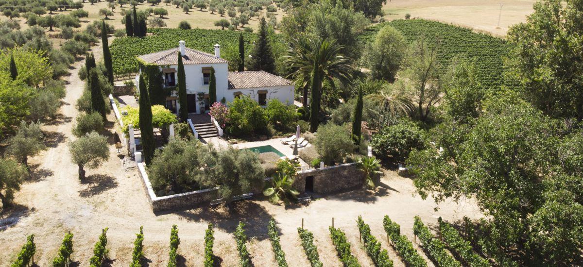 Rural House for Full Rent Huerto de la Condesa jardin