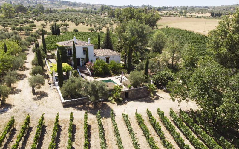 Ländliches Haus zur vollen Miete Huerto de la Condesa jardin