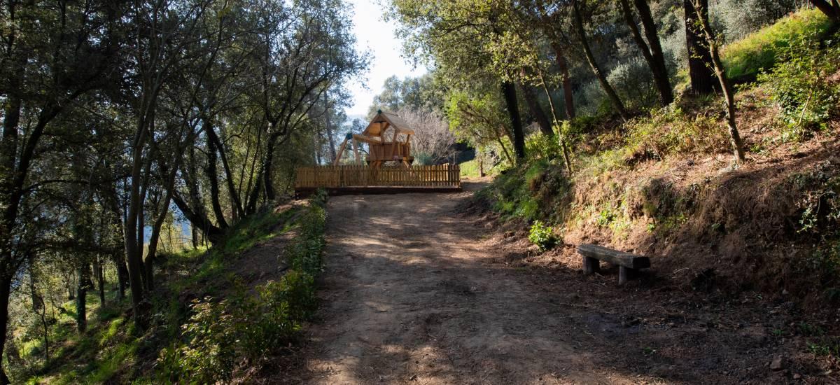 La Piconera Casa Rural Osor Girona Rusticae campo