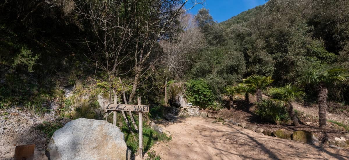 La Piconera Rural Home Osor Girona Rusticae Field4