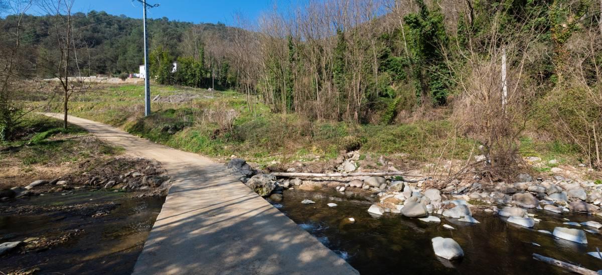 La Piconera Rural Home Osor Girona Rusticae Field2