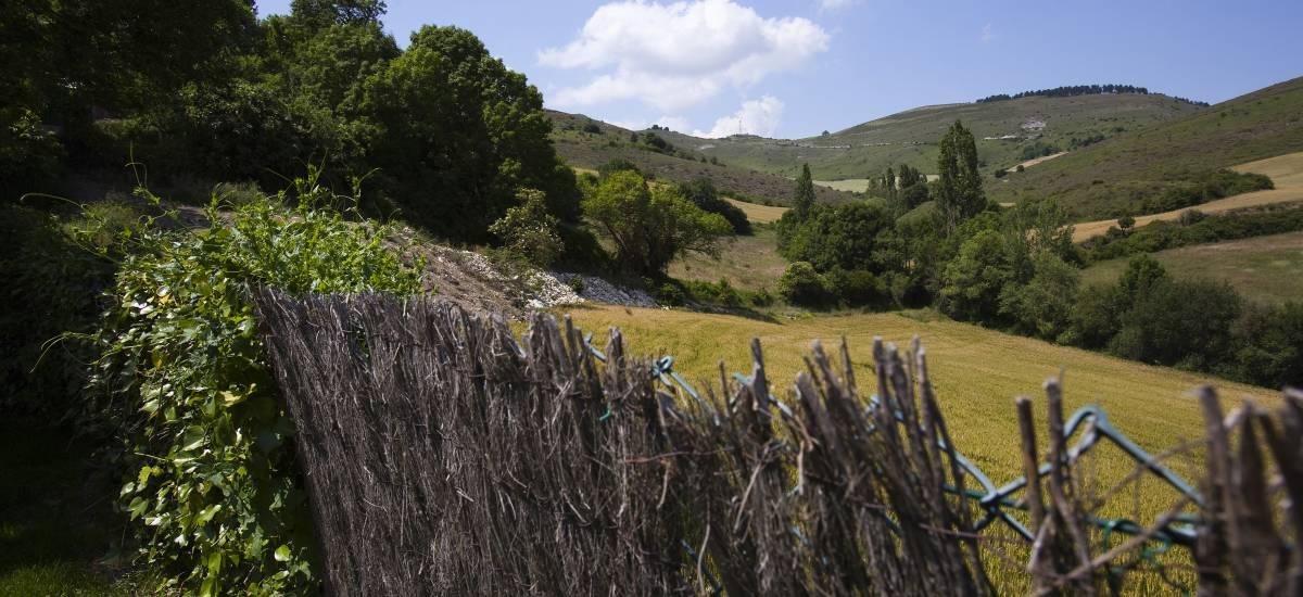 Casa Rural Mendiburu Landetxea