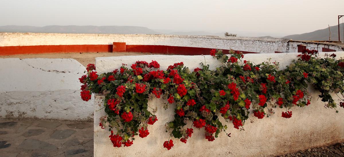 Rusticae Jaén Hotel con encanto Alrededores