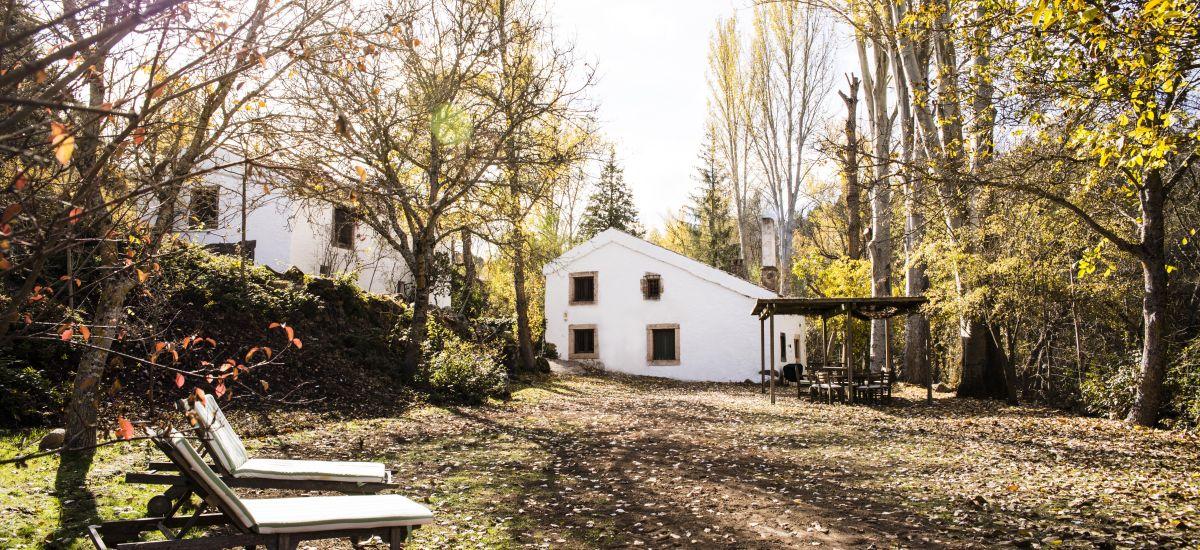 El Molino del Feo Casa de Alquiler Completo Jardin 2