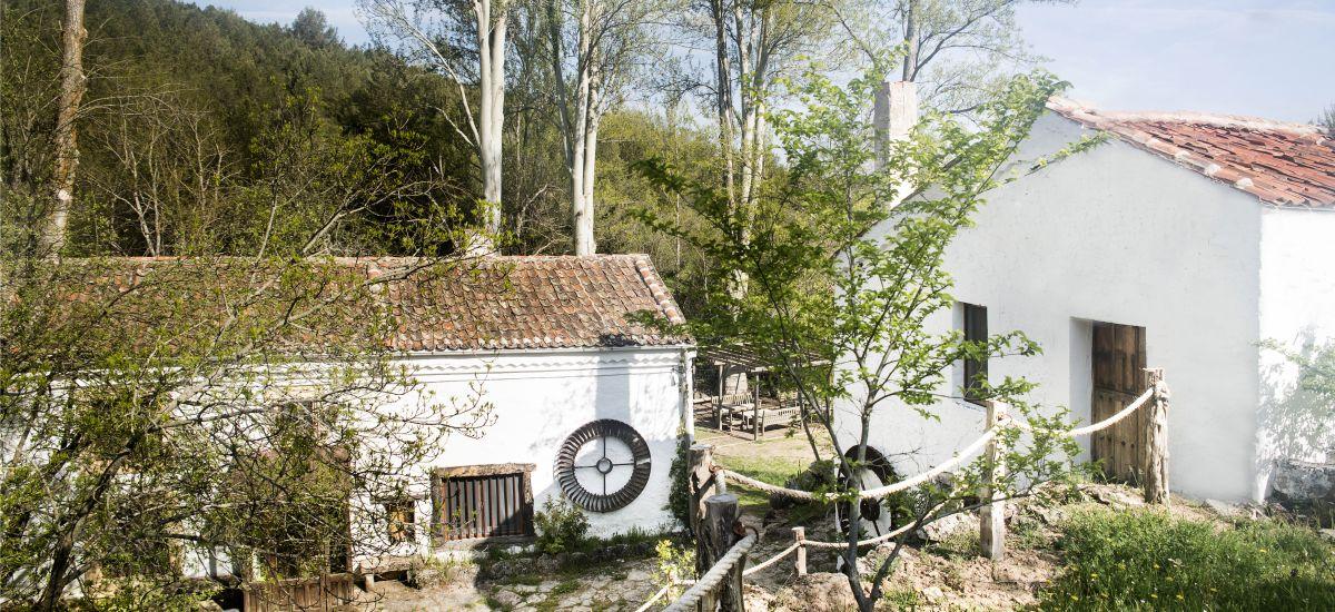 Casa Rural de Alquiler Completo Molino del Feo