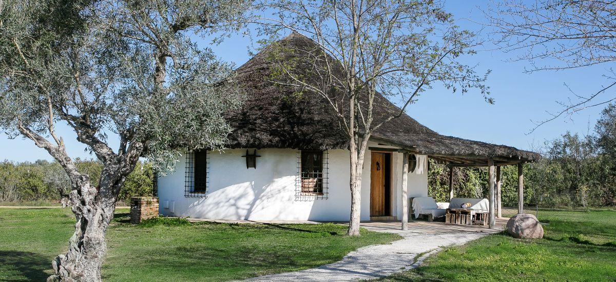 Hotel Ardea Purpurea Lodge Rusticae Iglú