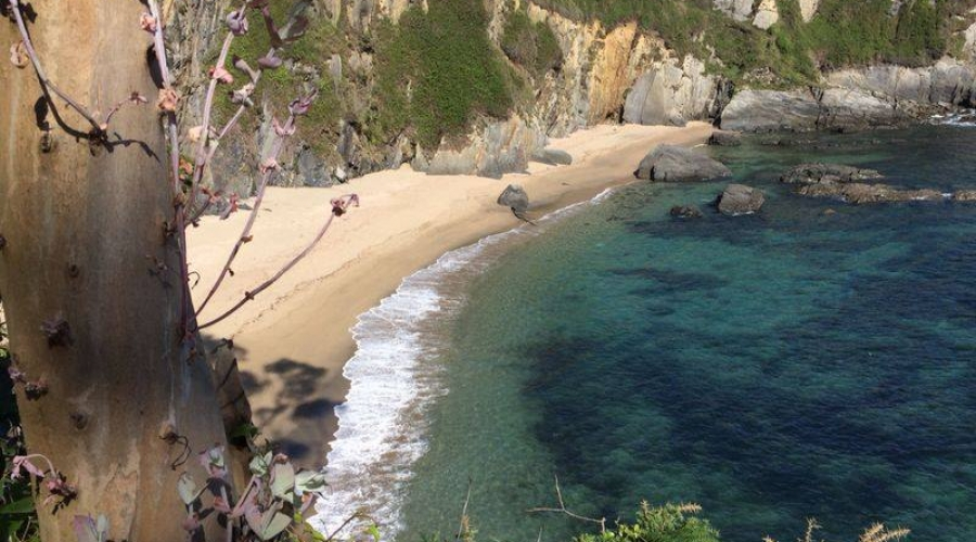 Rusticae Asturias Hotel Pleamar de playa Alrededores