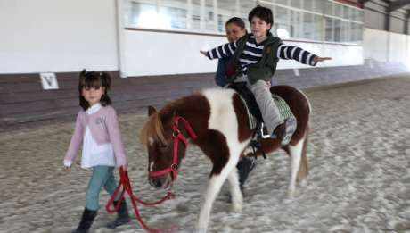Hoteles Rusticae, Hoteles con caballos