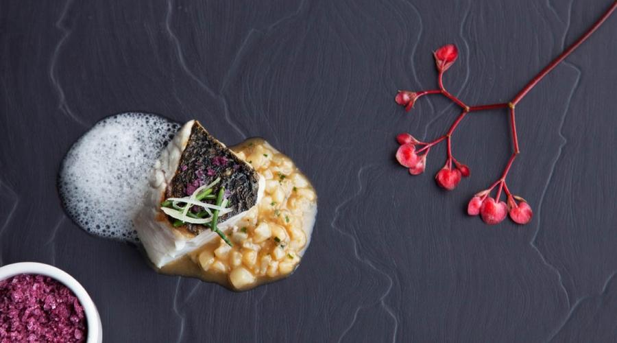 rusticae alava hotel viura con encanto plato
