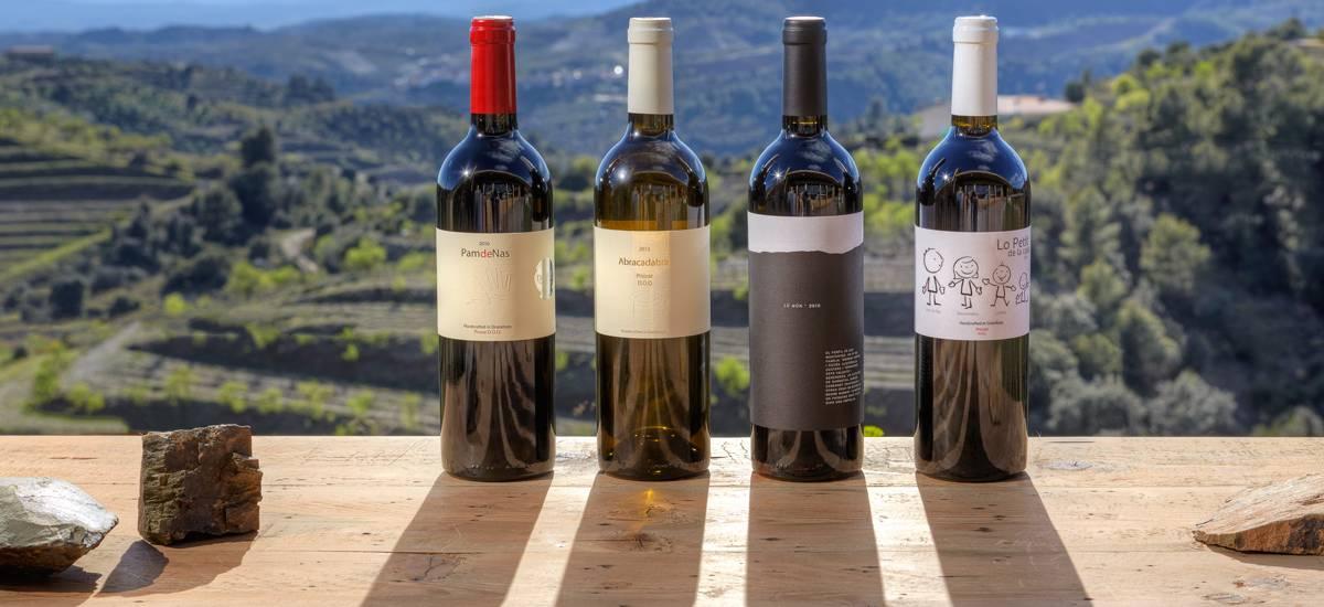 Rusticae Tarragona Hotel Trossos del Piorat de vino