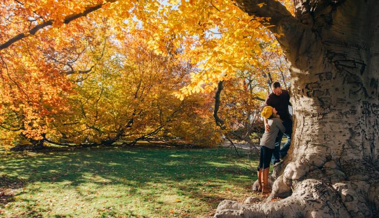 Otoño: La estación más romántica del año