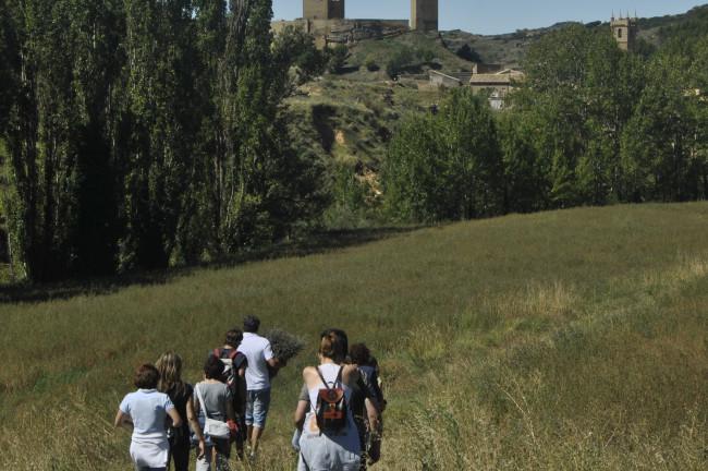 Taller de Espliego en Posada la Pastora (Zaragoza)