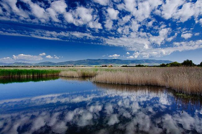 8. Parque Nacional de las Tablas de Daimiel (Ciudad Real)