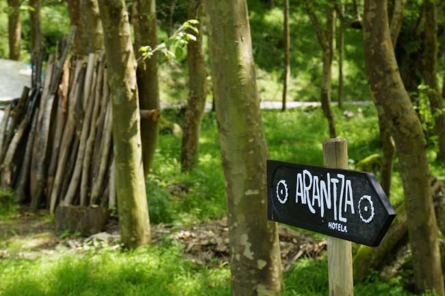 Entre los bosques de Arantza (Navarra)