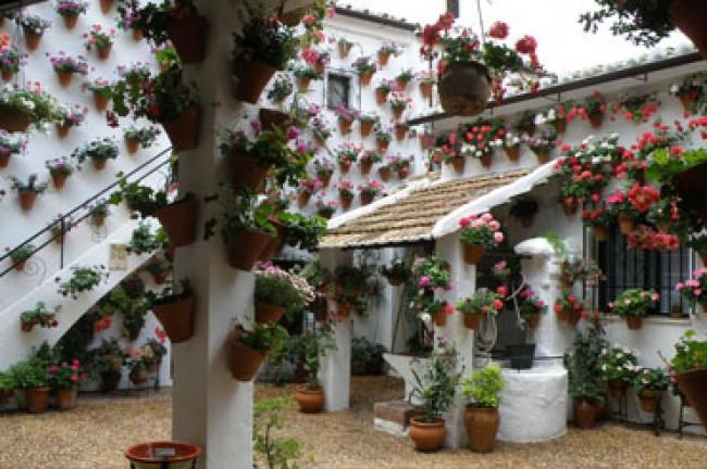 Por los Patios de Córdoba