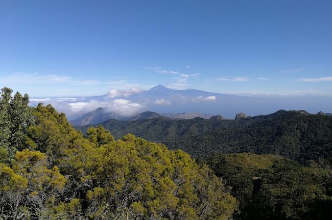 15. Parque Nacional de Garajonay (La Gomera)