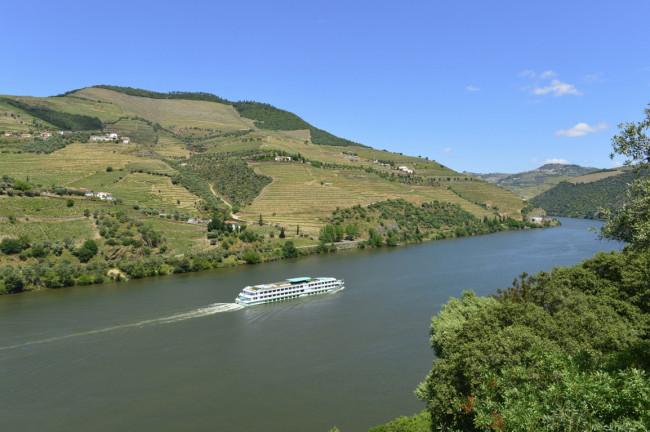 Paisaje perfecto en Portugal - Valle del Douro