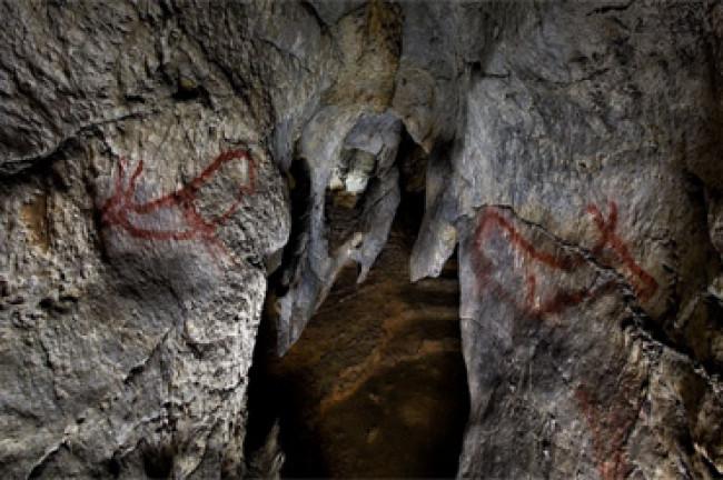Cueva de Covalanas (Cantabria)