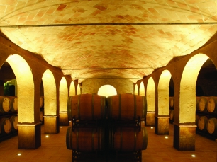 Tour por viñas - Latam