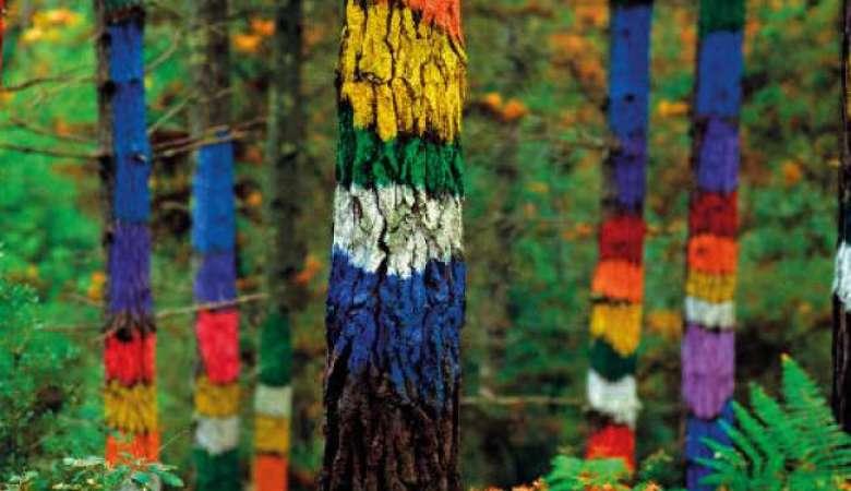 Regalo Rusticae Bosques Encantados-11