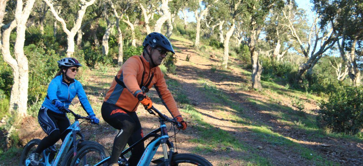 "Gift Key ""Alentejo by electric bike"" Experience"