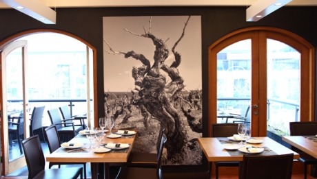 Miguel Torres Restaurante de Vinos
