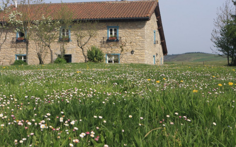 Casa Rural Alquiler Completo cerca de la playa Ulle Gorri