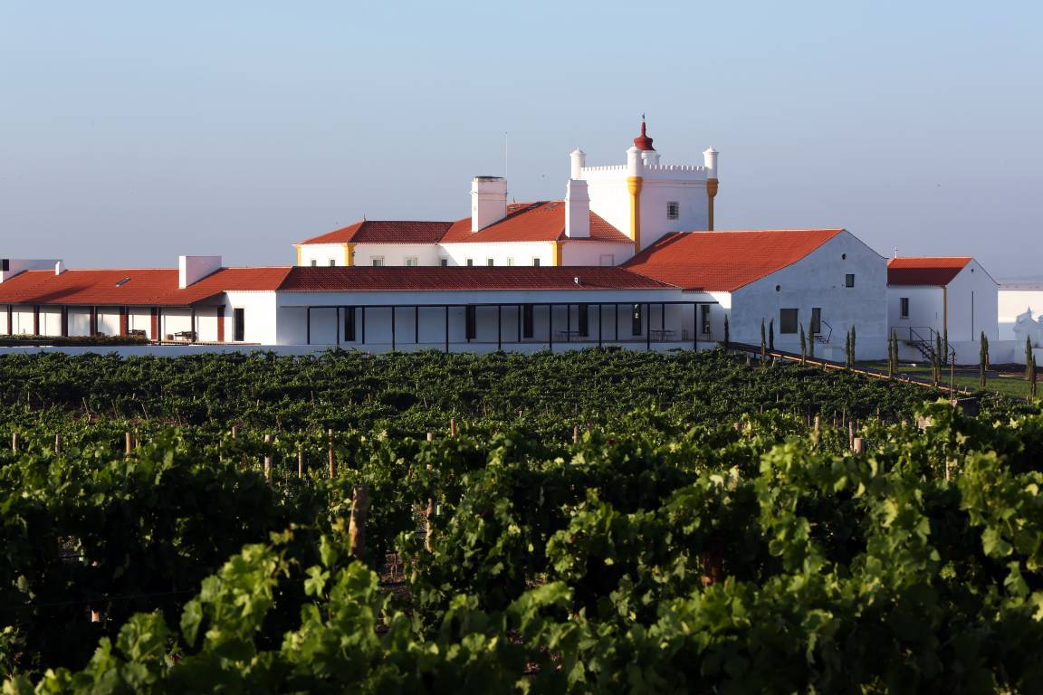<strong><strong>Boutique Hotels in Alentejo Torre de Palma Wine Hotel vineyards</strong></strong>