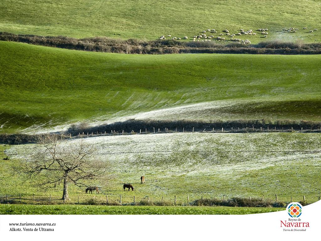 <strong>Valle de Ultzama - Escapada a Navarra</strong>