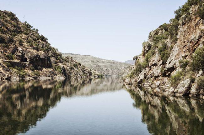 Río Duero. Nacimiento del Río Duero. Rutas por el río Duero, los arribes del río Duero, cruceros por el Río Duero, bodegas