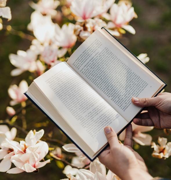 Tu lectura preferida es...