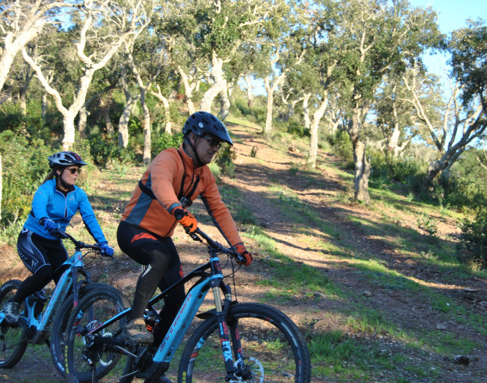 """Alentejo by electric bike"" Experience"