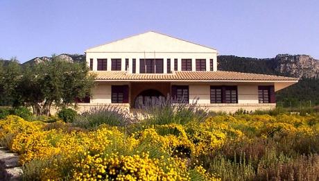 Bodegas y Viñedos Casa de la Ermita